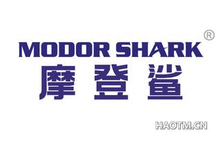 摩登鲨 MODOR SHARK