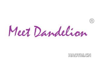 MEET DANDELION