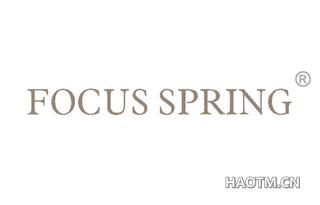 FOCUS SPRING