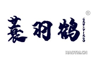 蓑羽鹤 GRUSVIRGO