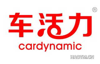 车活力 CARDYNAMIC