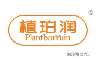 植珀润 PLANTBORRUIN