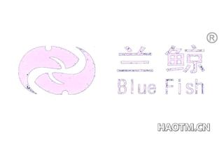 兰鲸 BLUEFISH
