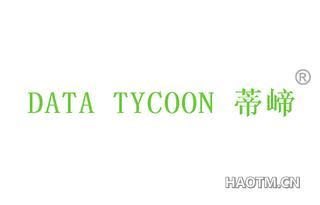 蒂崹 DATA TYCOON