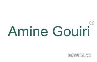 AMINE GOUIRI