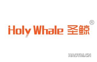 圣鲸 HOLY WHALE