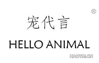 宠代言 HELLO ANIMAL