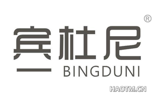 宾杜尼 BINGDUNI