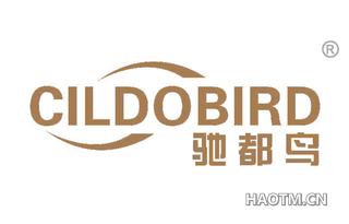 驰都鸟 CILDOBIRD