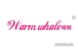 暖鲸 WARM WHALE