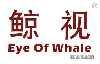 鲸视 EYE OF WHALE