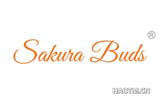 SAKURA BUDS