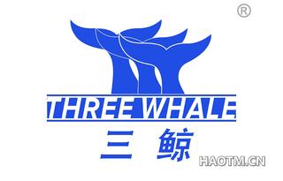 三鲸 THREE WHALE