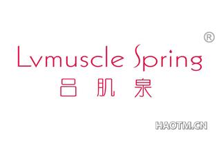 吕肌泉 LVMUSCLE SPRING