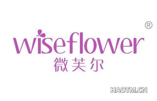 微芙尔 WISEFLOWER