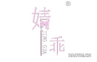 婧乖 JING GUA
