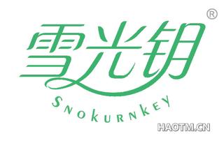 雪光钥 SNOKURNKEY