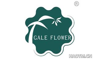 GALE FLOWER