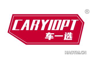 车一选 CARYIOPT