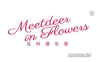 花间遇见鹿 MEETDEER IN FLOWERS