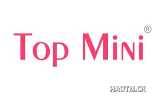 TOP MINI
