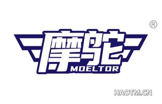 摩鸵 MOELTOR