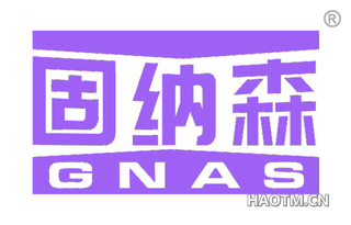 固纳森 GNAS
