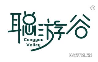 聪游谷 CONGYOU VALLEY