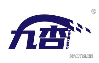 九杏 NINEXIMG
