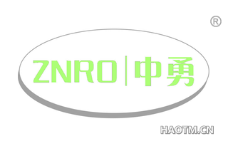 中勇 ZNRO