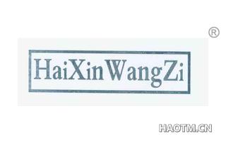 HAIXINWANGZI
