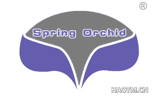 SPRING ORCHID