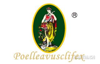 POELLEAVUSCLIFEX